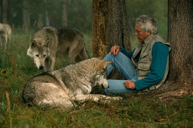Living With Wolves by Jim and Jamie Dutcher (6)