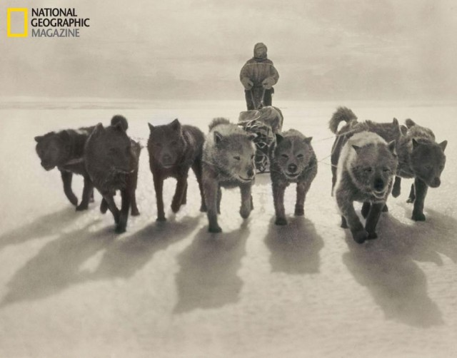 Mawson's Antarctic Trek- Into the Unknown