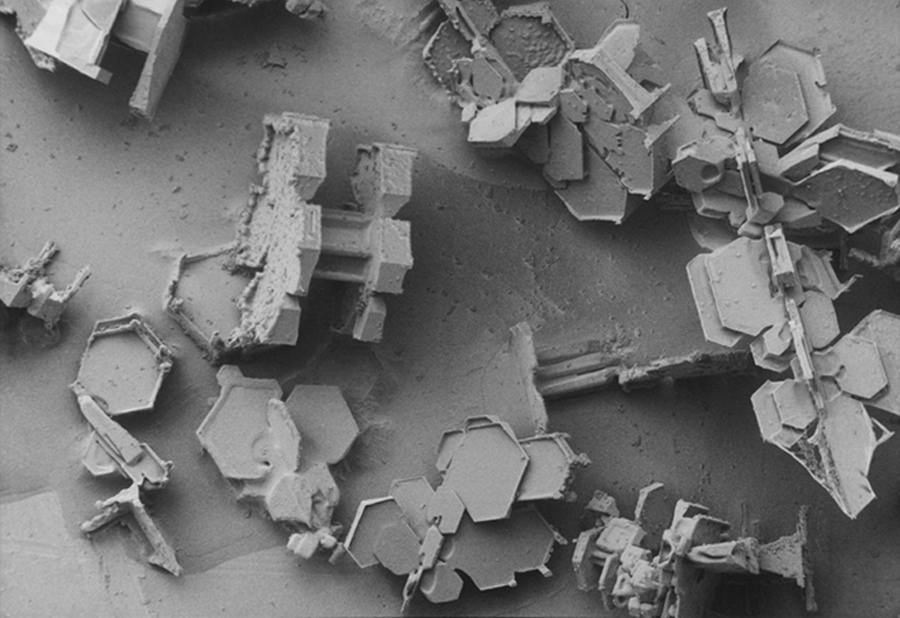 wordlesstech snowflake images under an electron microscope