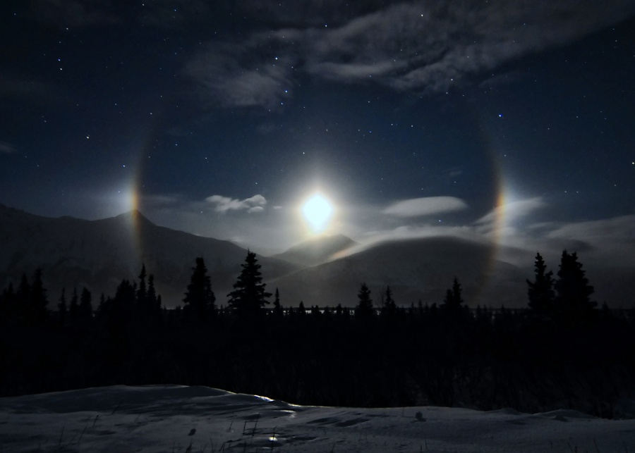 Alaskan Moondogs