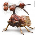 Brazilian Treehopper- the weirdest creature you ever se...