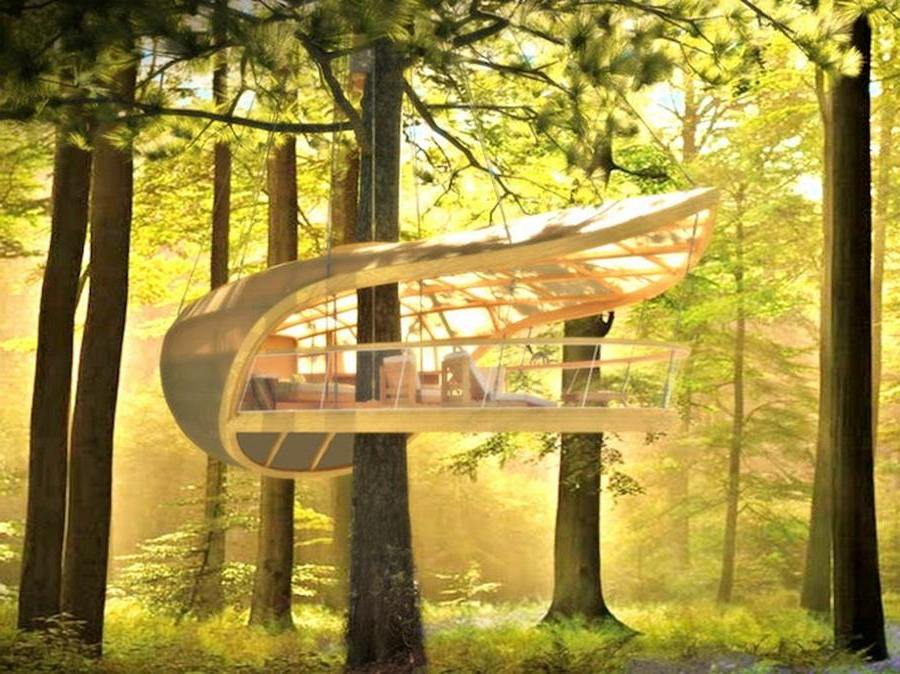 Luxury Treehouse- the ultimate Comfort in Nature (4)