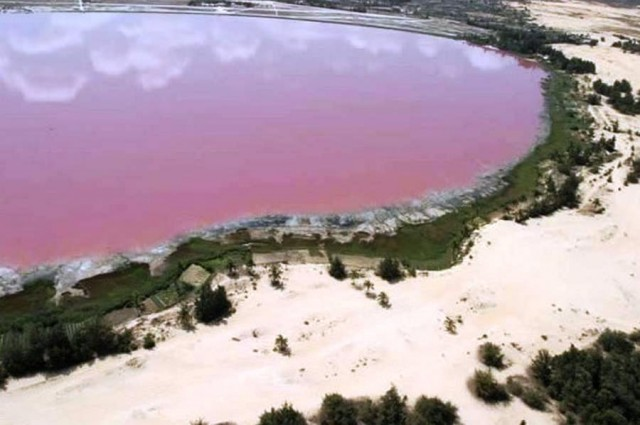 Pink Lake in Dakar