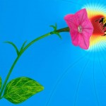 Flowers Communicate with Electricity