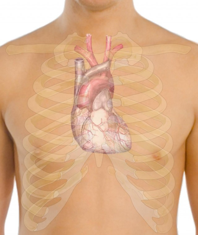 Prevent Heart Disease with these Healthy Tips (1)