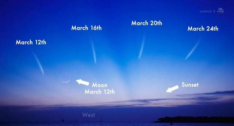 How to see Comet PANSTARRS