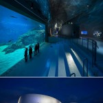 The Blue Planet Europe's Largest Aquarium Opens
