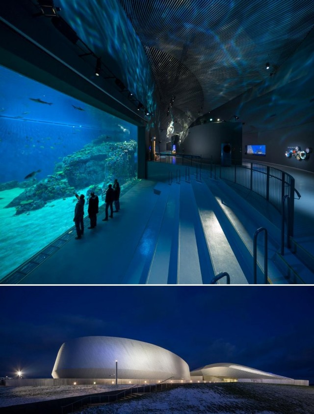 The Blue Planet Europe's Largest Aquarium