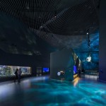 The Blue Planet Europe's Largest Aquarium (5)