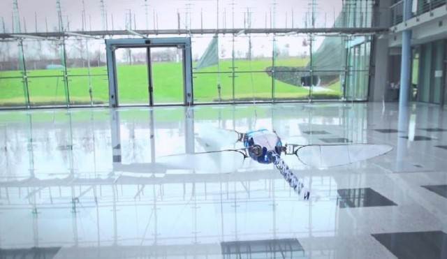 BionicOpter dragonfly drone