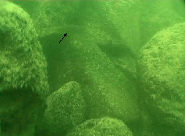 Mysterious Ancient Structure under the Sea