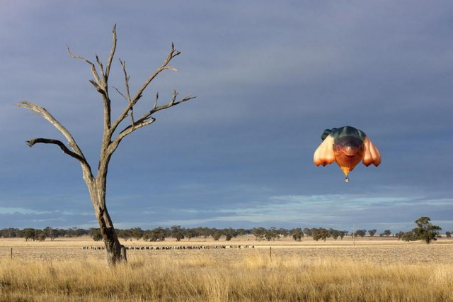 The Skywhale in First Flight (5)