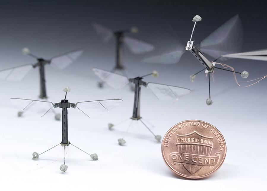 Tiny Robotic Insect flight demonstration