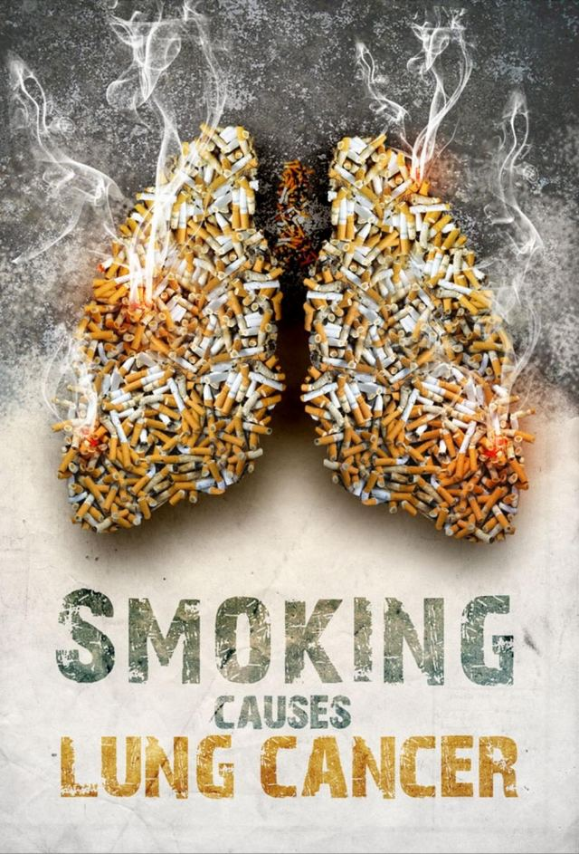 Anti Smoking Advertisements (6)
