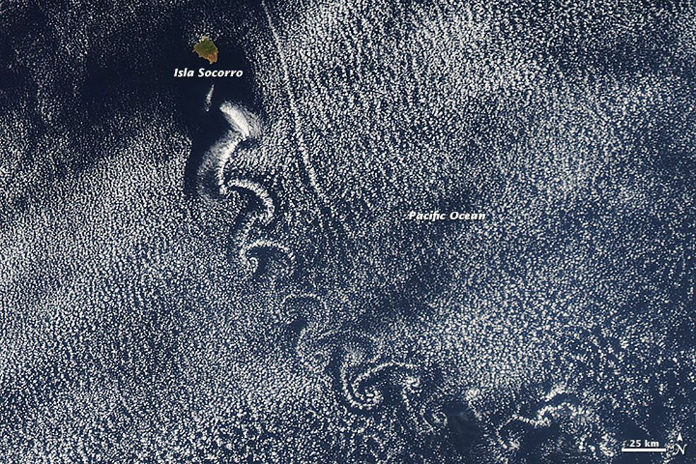 A Swirl of Clouds over the Pacific