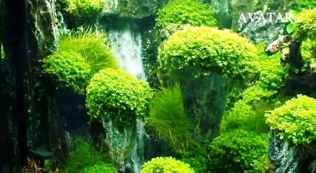 Avatar Landscaping aquarium with underwater waterfalls
