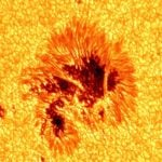 Best capture of Sunspot ever