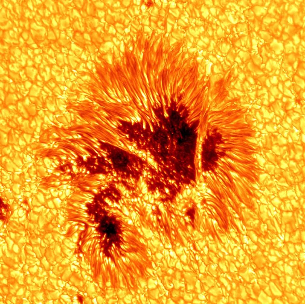 Best capture of Sunspot