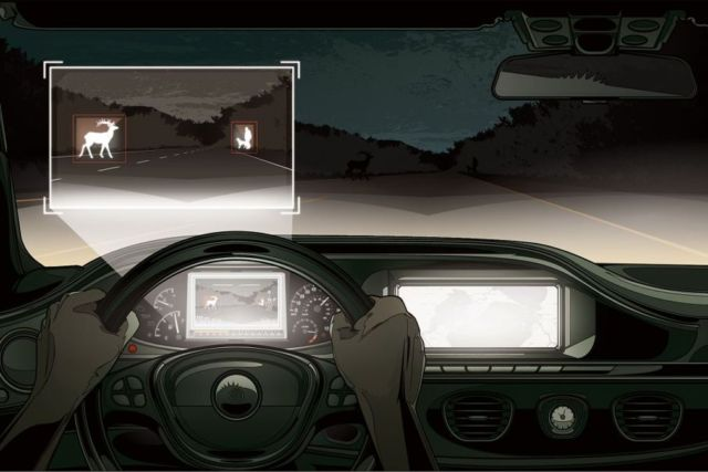 Infrared Car System spots Wildlife on the road (3)