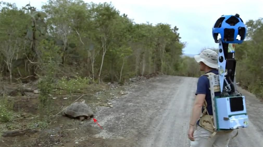 Exploring Galapagos Islands with Google Maps (5)