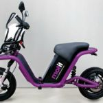 First Public Electric Scooter Sharing scheme