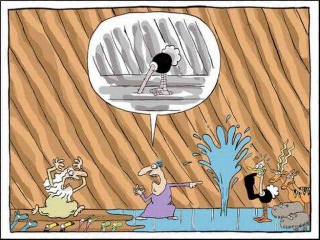 Funny Drawings 2013 (11)