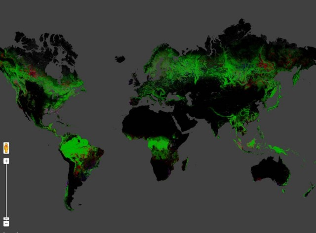 High-Res Interactive Map of Global Deforestation