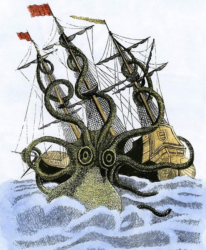 Sea monster Kraken existed (4)