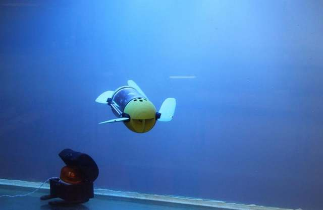 Turtle Bot will help underwater Archeologists 1