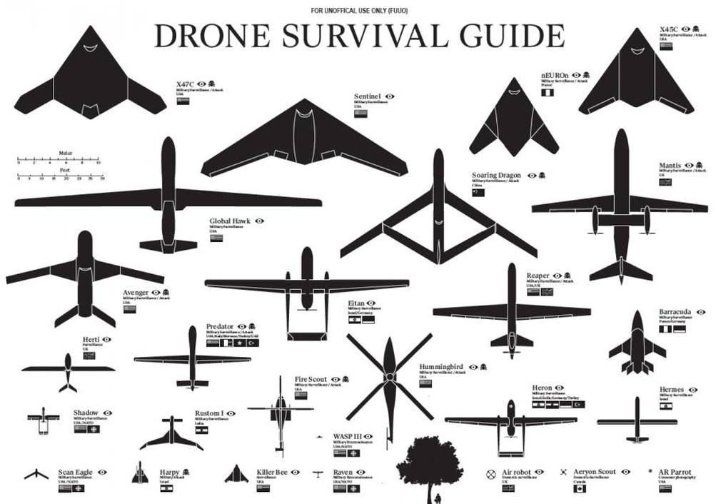 Fascinating Drone Survival Guide