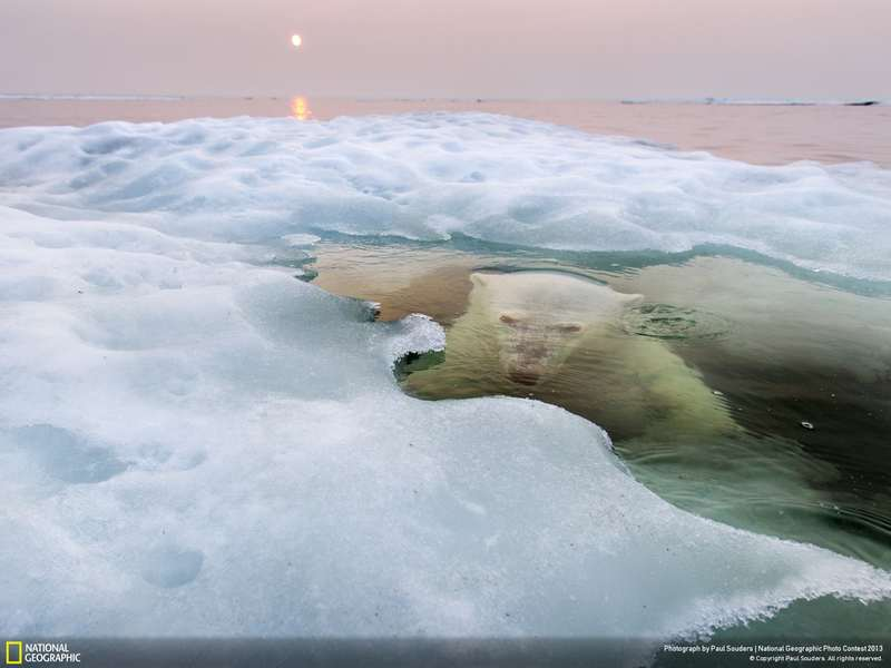 National Geographic Photo Contest 2013 Winners (7)