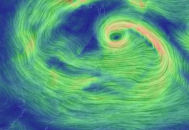 Real-time Global wind map (2)