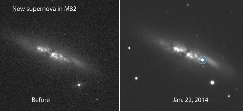 Bright Supernova Blows up in nearby M82 -2