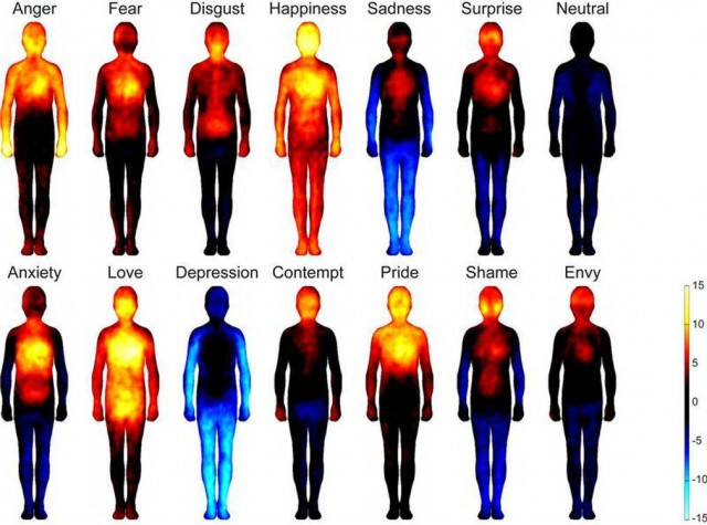 Emotion map on the human body
