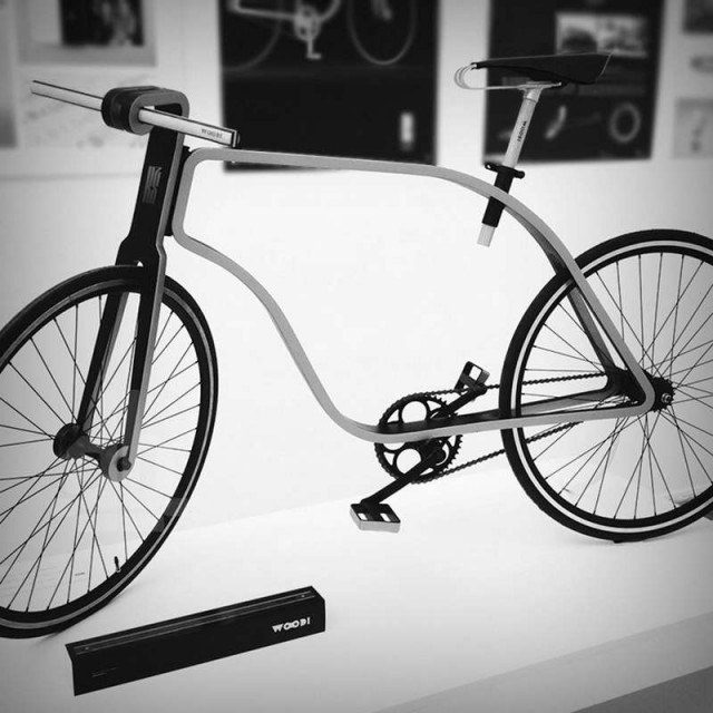 Flat Frame Bicycle (6)