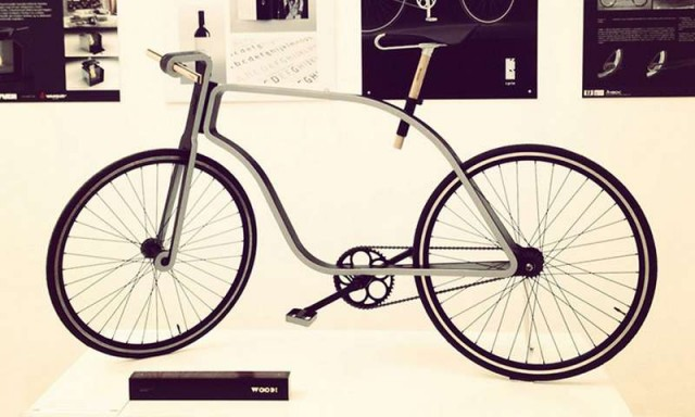 Flat Frame Bicycle (4)
