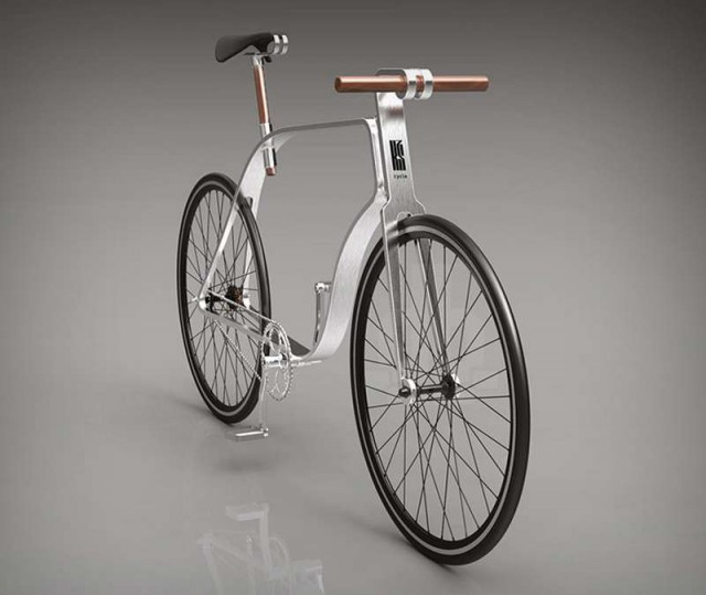Flat Frame Bicycle (3)