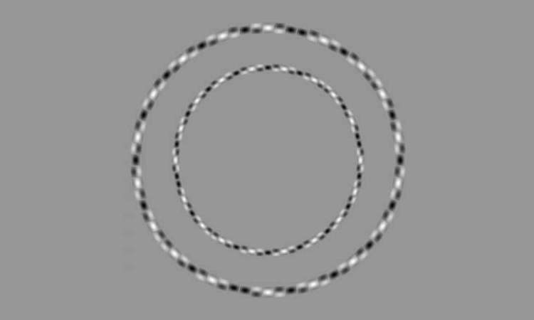 Irregular rings Optical illusion