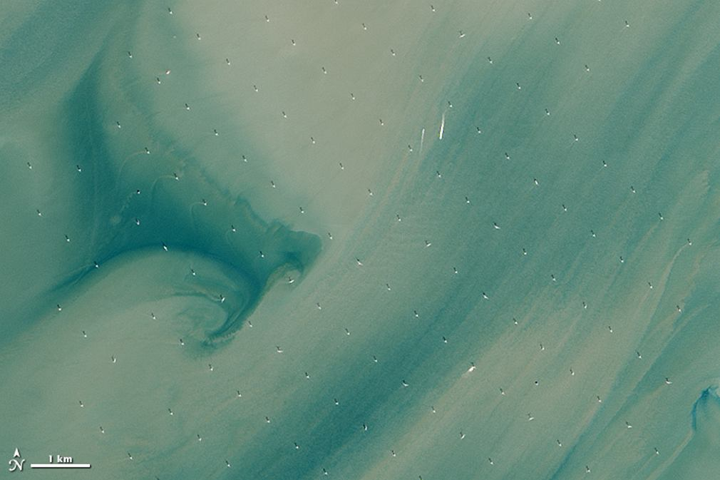Largest Offshore Wind Farm from Space 1