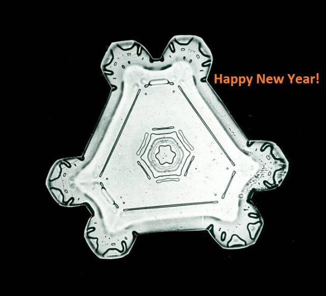New Year's triangular Snow crystal