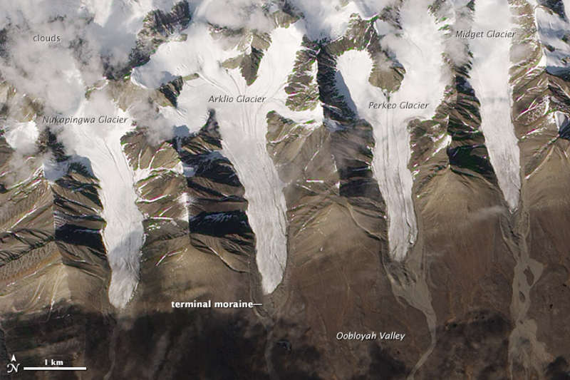 Scratching out a Living on Ellesmere Island