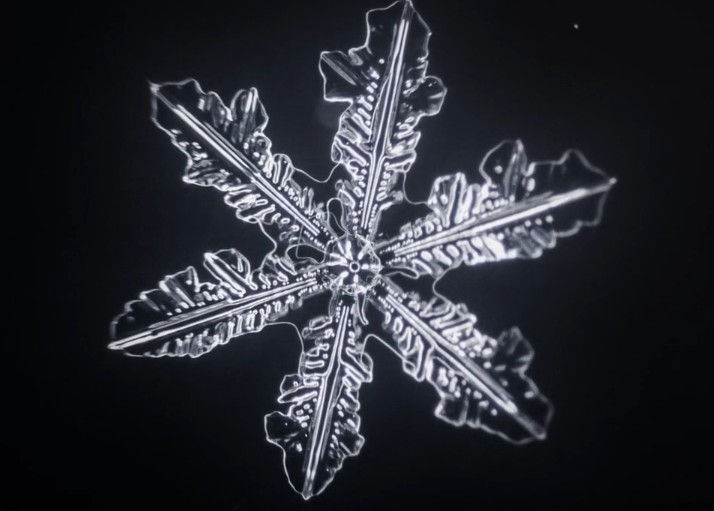 Snowtime- the birth of a Snowflake