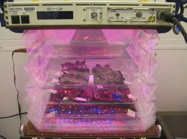 Fresh Food Production in Space
