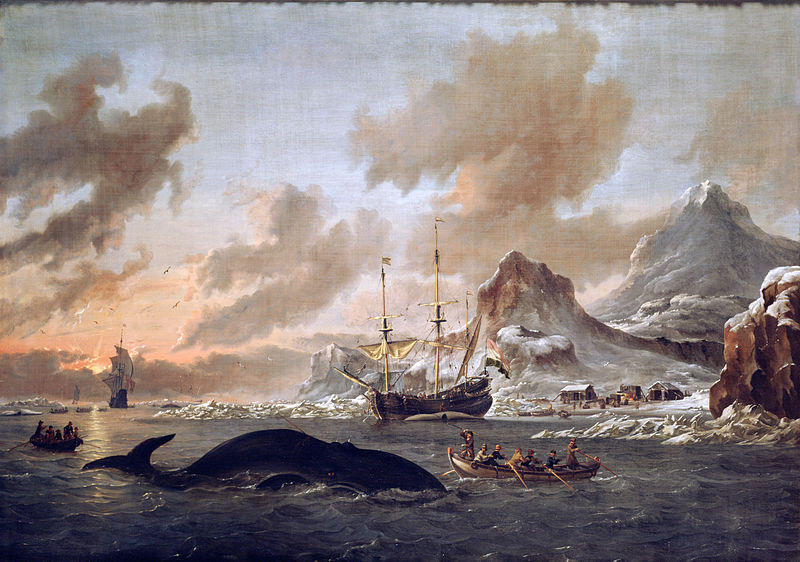 essays on japanese whaling Japan's research whaling in the antarctic  introduction  japan's objective is to resume commercial whaling for abundant species on a sustainable basis under international control.