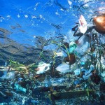 The World's Garbage Patches Increasing… With No End in ...