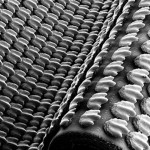 3D-printed shark skin to improve swimming