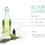 A Guide to Natural Cleaning Products- infographic