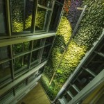 World's tallest vertical garden unveiled in Quebec