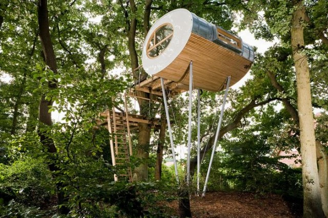 Rounded shape treehouse (6)