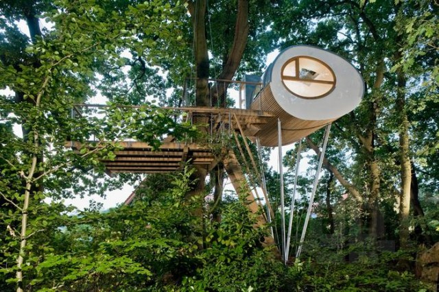 Rounded shape treehouse (5)